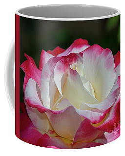 Double Delight Rose 1 Coffee Mug