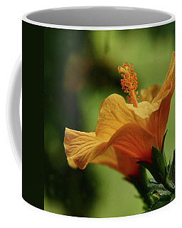 Double Grace Coffee Mug by Evelyn Tambour