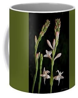 Double Tuberose In Bloom #2 Coffee Mug