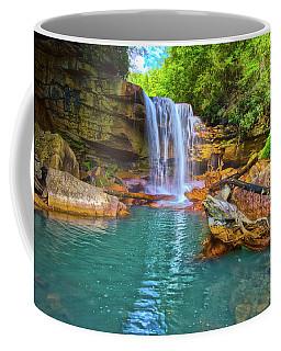 Douglas Falls 2 Coffee Mug