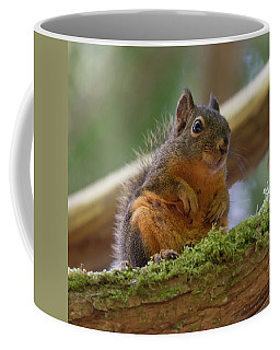 Douglas Squirrel Coffee Mug