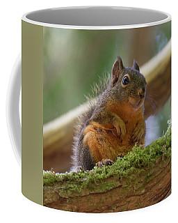 Douglas Squirrel Coffee Mug