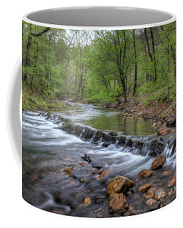 Down Stream Coffee Mug