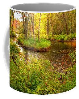 Coffee Mug featuring the photograph Downeast Fall Stream by Alana Ranney
