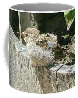 Coffee Mug featuring the photograph Downy Nestling by Pamela Patch