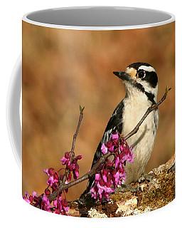 Downy Woodpecker In Spring Coffee Mug