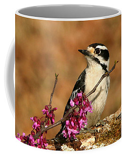 Downy Woodpecker In Spring Coffee Mug