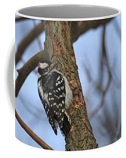Coffee Mug featuring the photograph Downy Woodpecker by Living Color Photography Lorraine Lynch