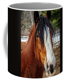 Draft Horse Coffee Mug
