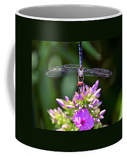 Dragonfly And Phlox Coffee Mug