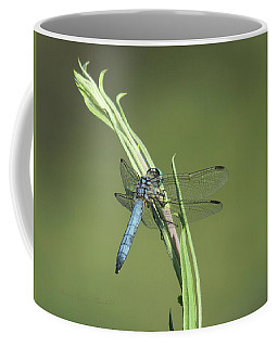 Dragonfly Art - Images From The Garden 7 Coffee Mug