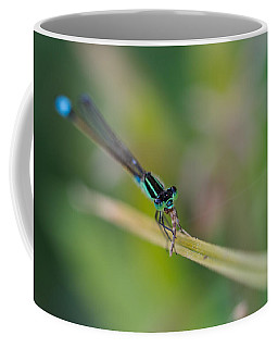 Damselfly's Lunch Coffee Mug by Christopher L Thomley
