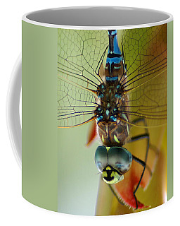 Dragonfly In Thought Coffee Mug