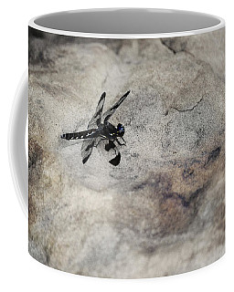 Dragonfly On Solid Ground Coffee Mug