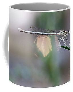 Coffee Mug featuring the photograph Dragonfly On Leaf by Michal Boubin