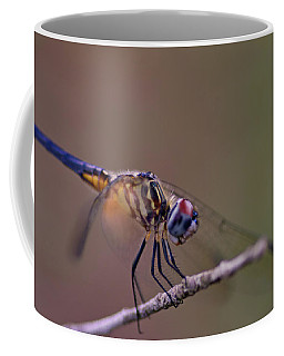 Dragonfly On Twig Coffee Mug