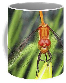Dragonfly Stare Coffee Mug by Mary Bedy
