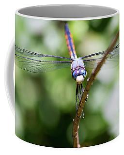 Dragonfly Watching Coffee Mug