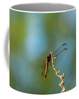 Dragonfly Wings Coffee Mug