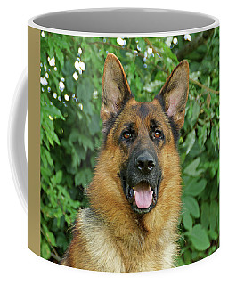 Coffee Mug featuring the photograph Drake by Sandy Keeton