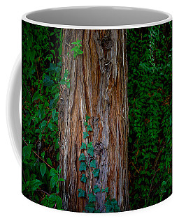 Dream World 17 Coffee Mug