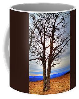 Dreamcatcher Coffee Mug by Dale R Carlson