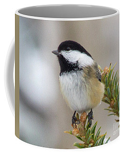 Dreaming Chickadee Coffee Mug
