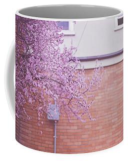 Dreaming Of Blossoming Coffee Mug