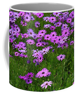 Dreaming Of Purple Daisies  Coffee Mug