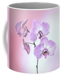 Coffee Mug featuring the photograph Dreamy Pink Orchid by Linda Phelps