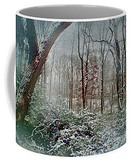 Coffee Mug featuring the photograph Dreamy Snow by Sandy Moulder