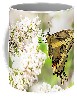 Dreamy Swallowtail Butterfly Coffee Mug by Cheryl Baxter
