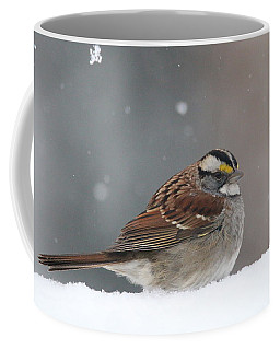 Coffee Mug featuring the photograph Dressed For Snow by Living Color Photography Lorraine Lynch