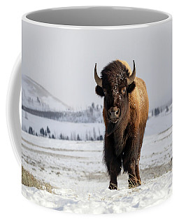 Coffee Mug featuring the photograph Dressed For Winter Weather by Jack Bell
