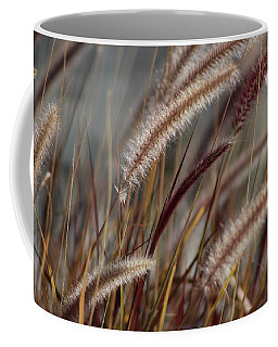 Dried Desert Grass Plumes In Honey Brown Coffee Mug