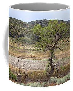 Dried Elizabeth Lake Coffee Mug
