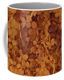 Dried Hydrangea Flower Arrangement  Coffee Mug