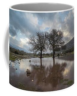Dried Tree Reflected Coffee Mug