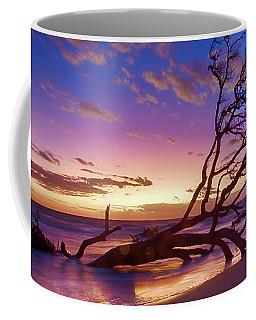 Driftwood Beach 1 Coffee Mug