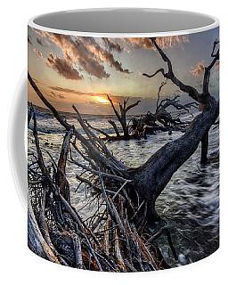 Driftwood Beach 5 Coffee Mug