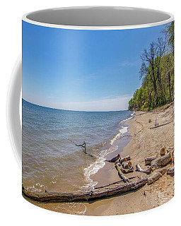 Coffee Mug featuring the photograph Driftwood On The Beach by Charles Kraus