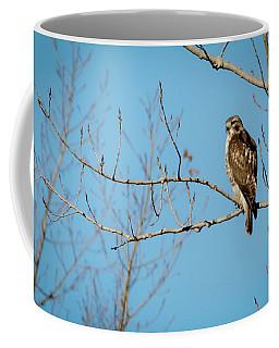 Drive By Hawk Coffee Mug