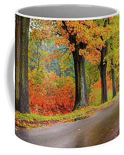 Driving On The Autumn Roads Coffee Mug by Dmytro Korol