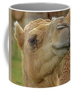 Dromedary Or Arabian Camel Coffee Mug