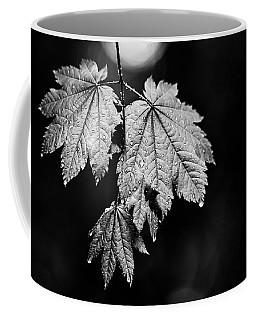Drop Coffee Mug