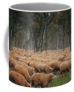 Droving Sheep  At Albert Australia Coffee Mug