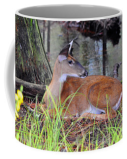 Coffee Mug featuring the photograph Drowsy Deer by Al Powell Photography USA