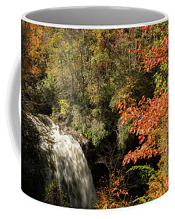 Dry Falls In North Carolina Coffee Mug