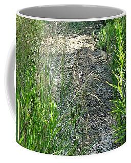Dry Patch  Coffee Mug