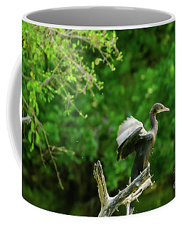 Drying Indian Cormorant Coffee Mug